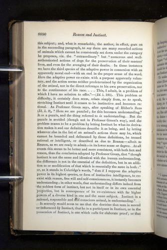 Image of Darwin-F349-1858-Zoologist-v16-06050