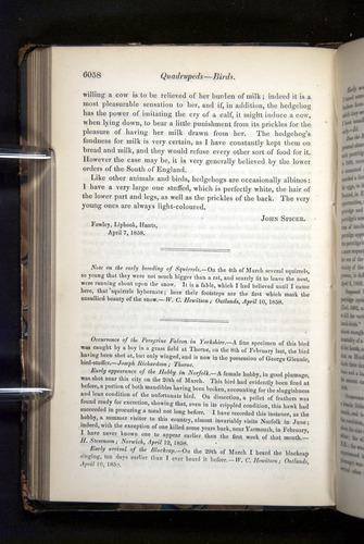 Image of Darwin-F349-1858-Zoologist-v16-06058