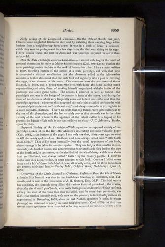 Image of Darwin-F349-1858-Zoologist-v16-06059