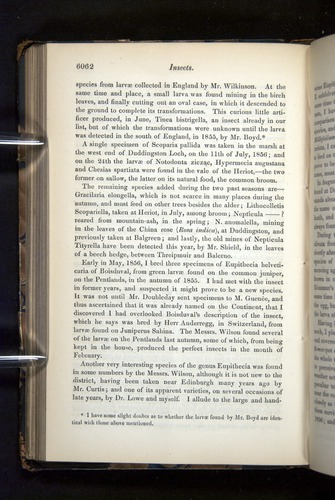 Image of Darwin-F349-1858-Zoologist-v16-06062