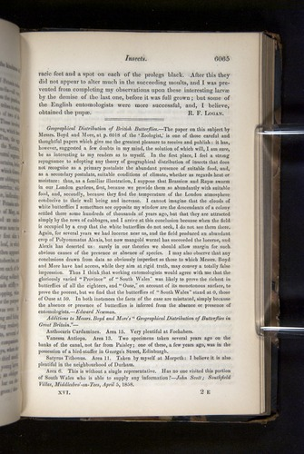 Image of Darwin-F349-1858-Zoologist-v16-06065