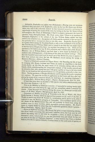 Image of Darwin-F349-1858-Zoologist-v16-06066