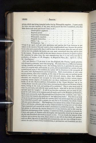 Image of Darwin-F349-1858-Zoologist-v16-06068
