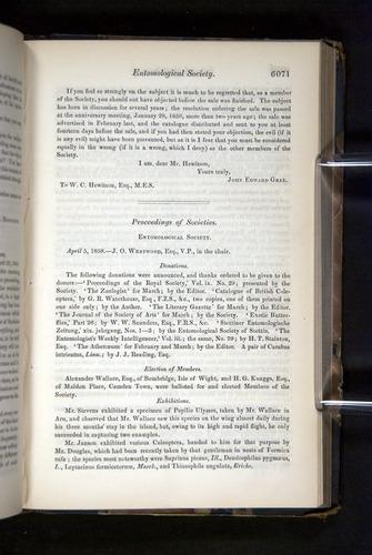 Image of Darwin-F349-1858-Zoologist-v16-06071