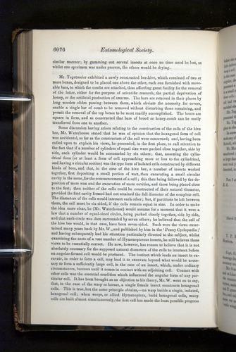 Image of Darwin-F349-1858-Zoologist-v16-06076