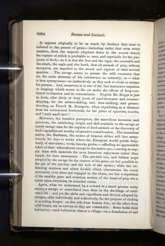 Image of Darwin-F349-1858-Zoologist-v16-06084