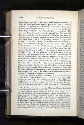 Image of Darwin-F349-1858-Zoologist-v16-06086