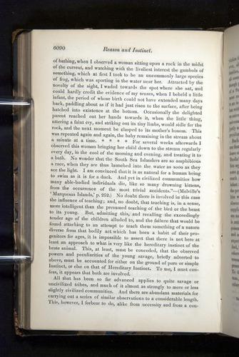 Image of Darwin-F349-1858-Zoologist-v16-06090