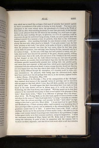 Image of Darwin-F349-1858-Zoologist-v16-06095