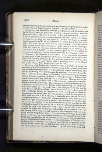 Image of Darwin-F349-1858-Zoologist-v16-06096
