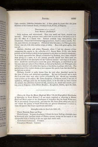 Image of Darwin-F349-1858-Zoologist-v16-06099