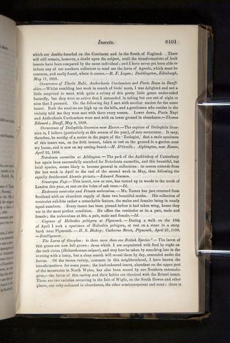 Image of Darwin-F349-1858-Zoologist-v16-06101