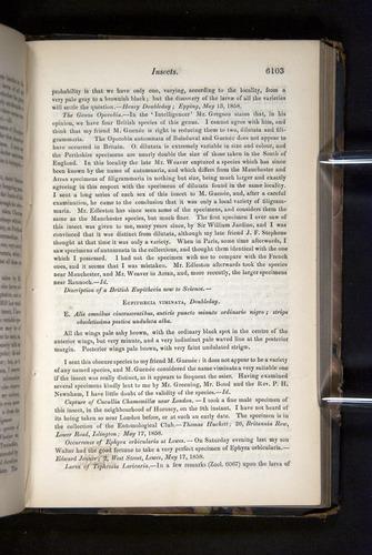Image of Darwin-F349-1858-Zoologist-v16-06103