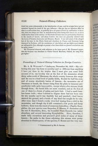 Image of Darwin-F349-1858-Zoologist-v16-06120