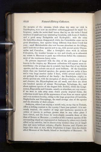 Image of Darwin-F349-1858-Zoologist-v16-06122