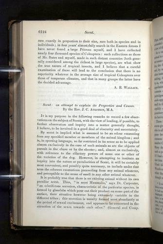 Image of Darwin-F349-1858-Zoologist-v16-06124