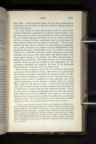 Image of Darwin-F349-1858-Zoologist-v16-06125