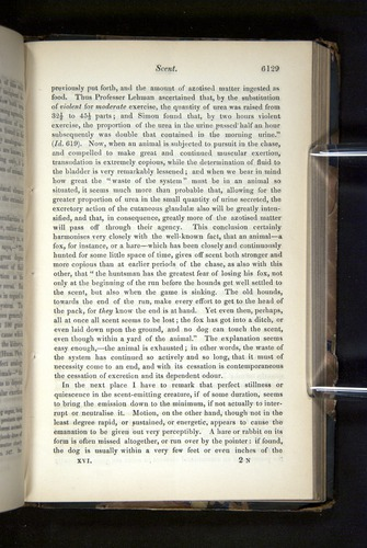 Image of Darwin-F349-1858-Zoologist-v16-06129
