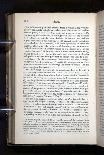 Image of Darwin-F349-1858-Zoologist-v16-06132