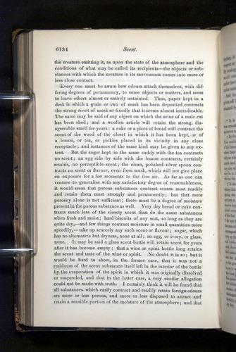 Image of Darwin-F349-1858-Zoologist-v16-06134