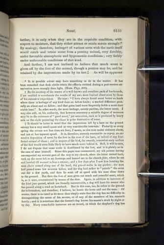 Image of Darwin-F349-1858-Zoologist-v16-06135
