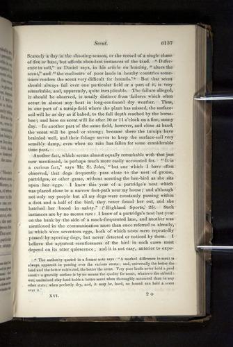 Image of Darwin-F349-1858-Zoologist-v16-06137