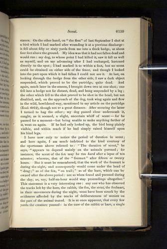 Image of Darwin-F349-1858-Zoologist-v16-06139