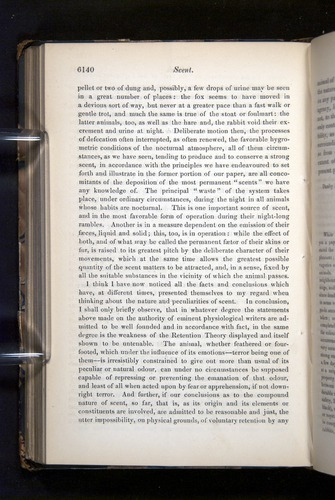 Image of Darwin-F349-1858-Zoologist-v16-06140