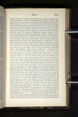 Image of Darwin-F349-1858-Zoologist-v16-06149