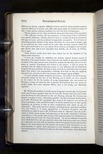 Image of Darwin-F349-1858-Zoologist-v16-06154