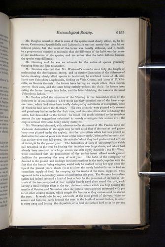 Image of Darwin-F349-1858-Zoologist-v16-06155
