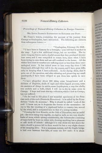 Image of Darwin-F349-1858-Zoologist-v16-06158