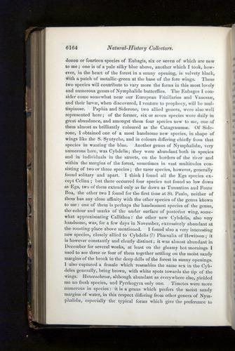 Image of Darwin-F349-1858-Zoologist-v16-06164
