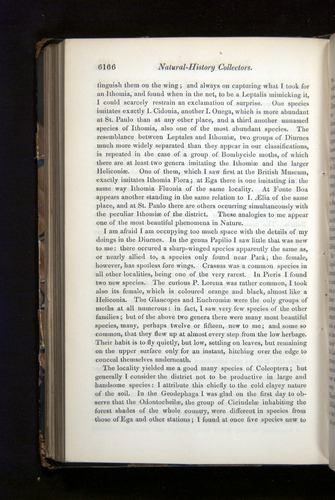 Image of Darwin-F349-1858-Zoologist-v16-06166