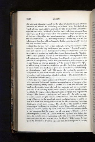Image of Darwin-F349-1858-Zoologist-v16-06178