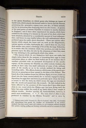 Image of Darwin-F349-1858-Zoologist-v16-06179
