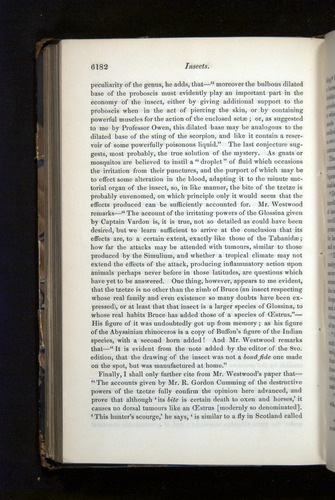 Image of Darwin-F349-1858-Zoologist-v16-06182