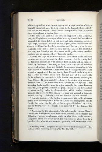 Image of Darwin-F349-1858-Zoologist-v16-06184