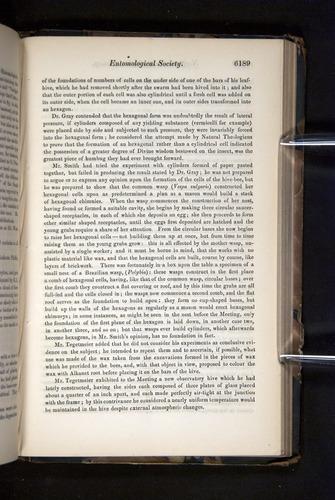 Image of Darwin-F349-1858-Zoologist-v16-06189