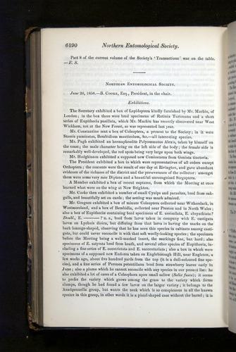 Image of Darwin-F349-1858-Zoologist-v16-06190
