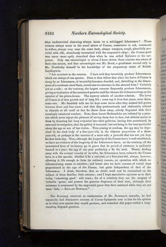 Image of Darwin-F349-1858-Zoologist-v16-06192