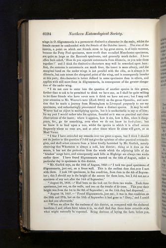 Image of Darwin-F349-1858-Zoologist-v16-06194