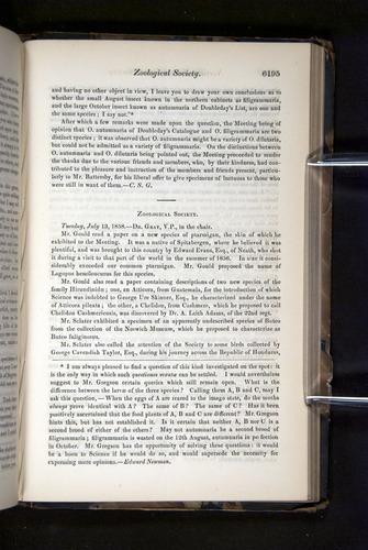 Image of Darwin-F349-1858-Zoologist-v16-06195