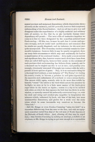 Image of Darwin-F349-1858-Zoologist-v16-06200