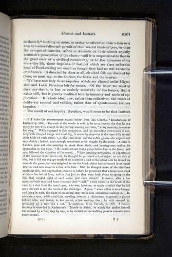 Image of Darwin-F349-1858-Zoologist-v16-06201