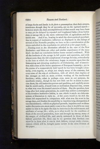 Image of Darwin-F349-1858-Zoologist-v16-06204