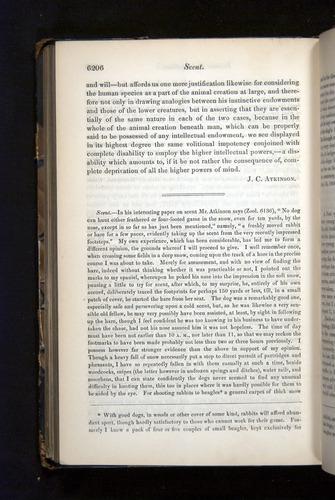 Image of Darwin-F349-1858-Zoologist-v16-06206