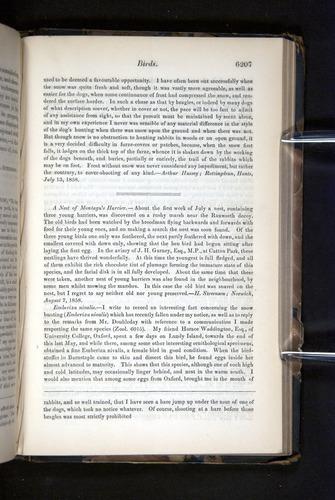 Image of Darwin-F349-1858-Zoologist-v16-06207