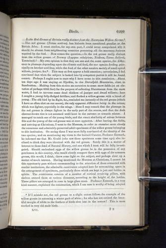Image of Darwin-F349-1858-Zoologist-v16-06209