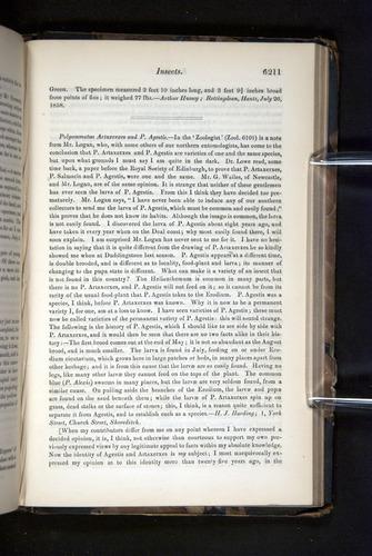 Image of Darwin-F349-1858-Zoologist-v16-06211